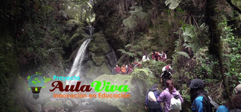 Proyecto Aulaviva